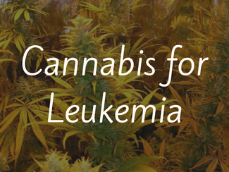 Cannabis for Leukemia