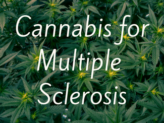 Cannabis for Multiple Sclerosis